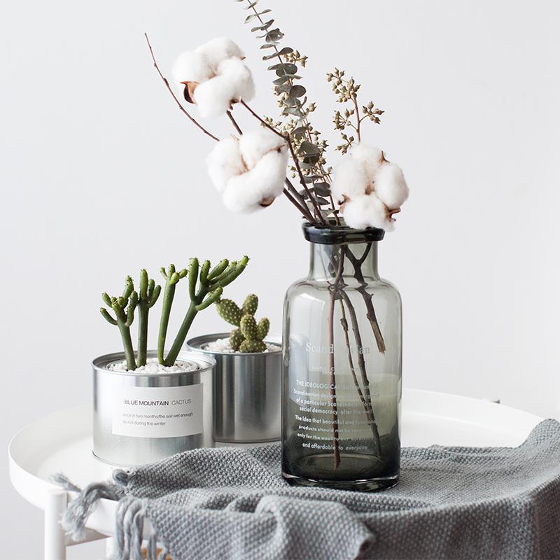 北欧风ins人气玻璃花瓶 scandinavian卷口插花瓶 桌面干花水培瓶图片