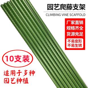 爬藤杆园艺支柱包塑钢管爬藤支架花支柱月季黄瓜植物花卉藤蔓爬藤