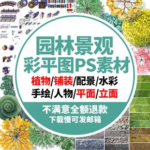 园林景观彩平图PSD素材植物手绘辅装PS后期立面平面图设计效果图