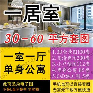 一室一厅装修设计效果图小户型50平米40-60平方单身公寓 一居室