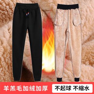 秋冬季加绒加厚羊羔绒运动女裤子大码外穿宽松卫裤显瘦休闲裤长裤