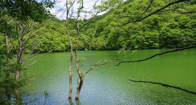青森旅游攻略 十二湖 湖中的星空似浮云消散黄昏中 飞猪