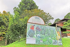 Sandakan Rainforest Discovery Centre