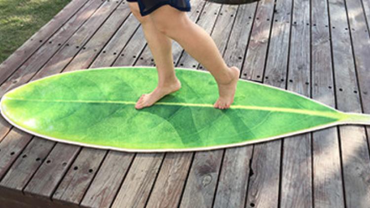 教你玩树叶——小家的颜值氛围全靠它撑!