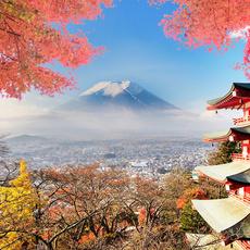 日本6天5晚半自助東京大阪兩天自由活動溫泉美食跟團游