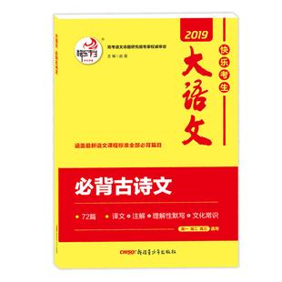 快乐2020版高中大语文高考教辅书籍