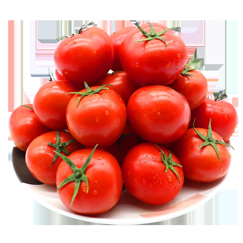 【绿行者】透心红番茄新鲜小西红柿孕妇水果蔬菜小番茄自然熟5斤
