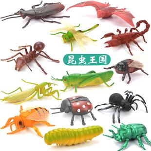 儿童塑胶仿真动物模型蜘蛛蝴蝶玩具