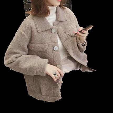 2019冬季新款韩版单排扣短款毛外套