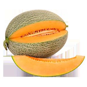 吐鲁番新鲜一箱网纹蜜瓜香甜哈密瓜