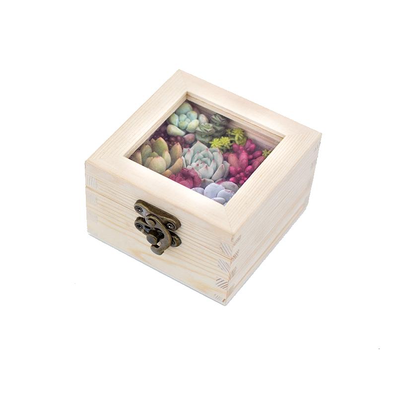 多肉礼盒多肉植物伴手礼 创意礼品花盒套装木盒组合套餐节日礼物