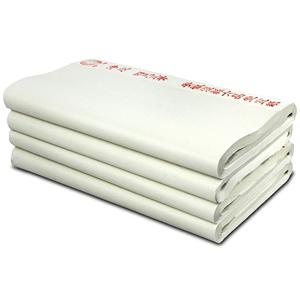 六品堂半生半熟100张纸练习生宣纸