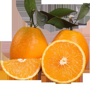 重庆奉节新鲜当季整箱10斤甜橙子