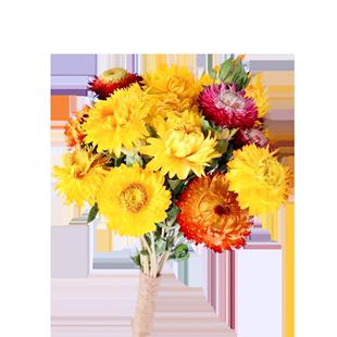雲南天然乾花帶瓶真花小雛菊向日葵太陽花風乾花束小清新裝飾擺件