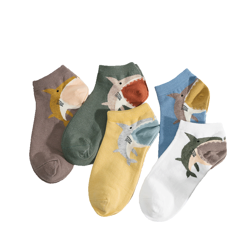 夏季新款袜子女韩国学院风五双装