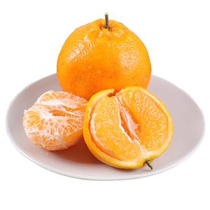 四川丑橘春见耙耙新鲜丑八怪5斤柑