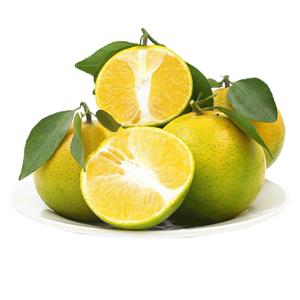 广西新鲜现摘皇帝柑黄帝柑橘子蜜
