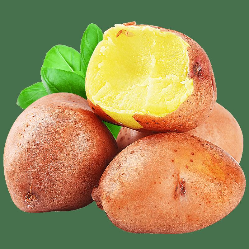 云南小土豆新鲜10斤马铃薯农产品蔬菜红皮洋芋批发迷你小黄心土豆