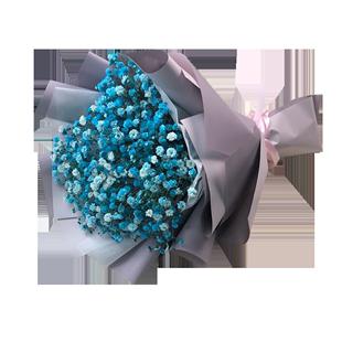 藍色滿天星乾花超大小花束送男生女生日禮物雲南鮮花速遞直髮包郵