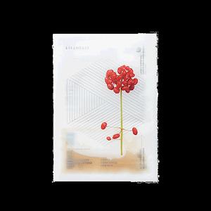 韩国直邮steambase /红参果面膜