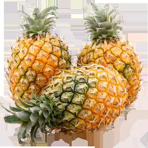 【果不让】云南香水新鲜当季手撕菠萝