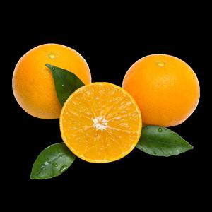 四川爱媛38号果冻现摘果冻新鲜橙子