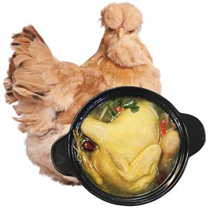 買一送一百年栗園北京老母雞油雞