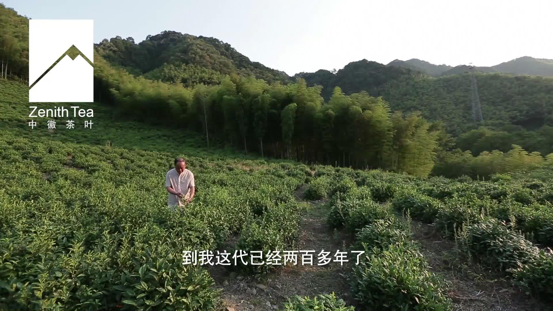 Çin Zenith çaylar organik faydaları yan etkileri da hong pao