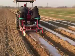 best quality automatic potato seed planters garlic planting machine for sales