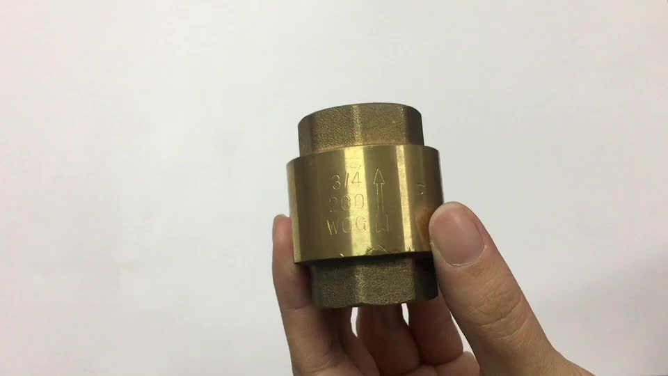 BWVA One-stop solution service reliable check valve brass