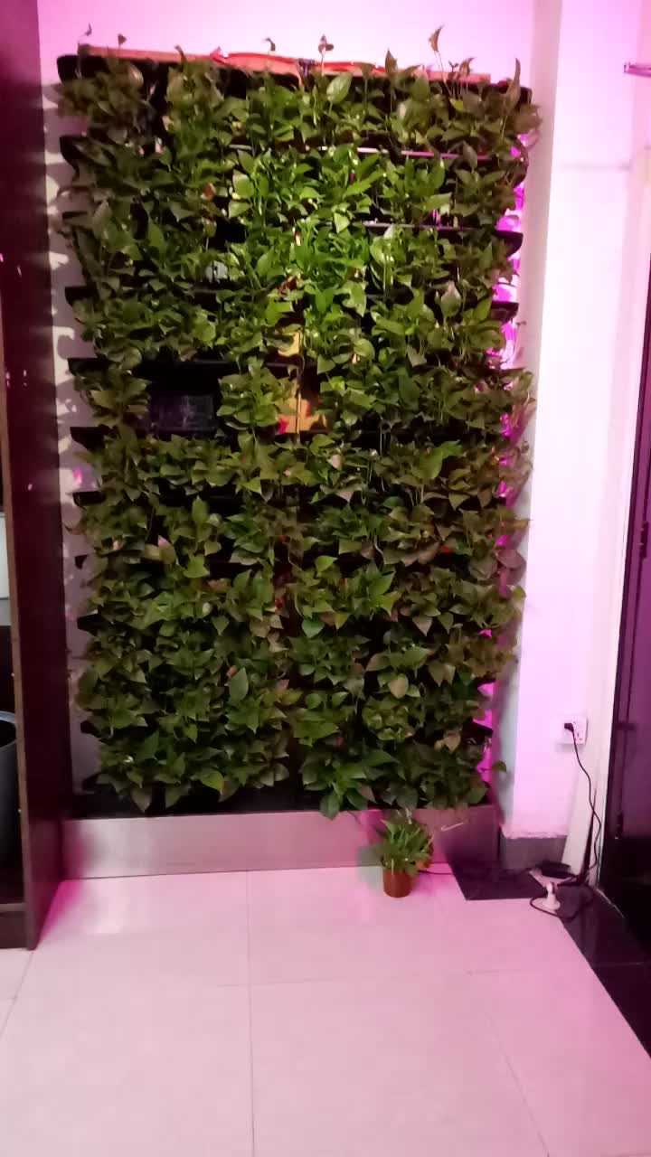 Hot Sale Hydroponic Grow Vertical Garden Decorations Hydroponic ...