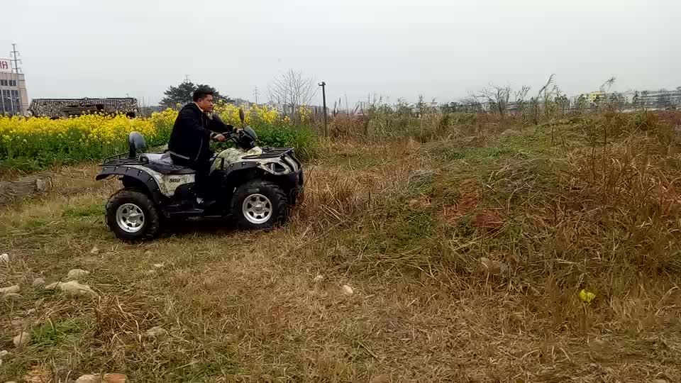 buy in china atv and farm utility vehicle ATV