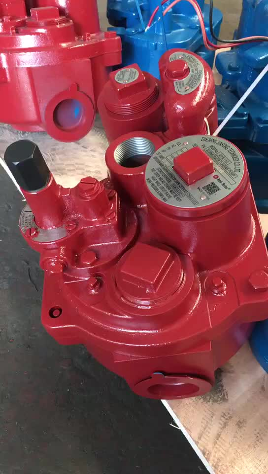 Red Jacket Submersible Fuel Pump for Fuel Station