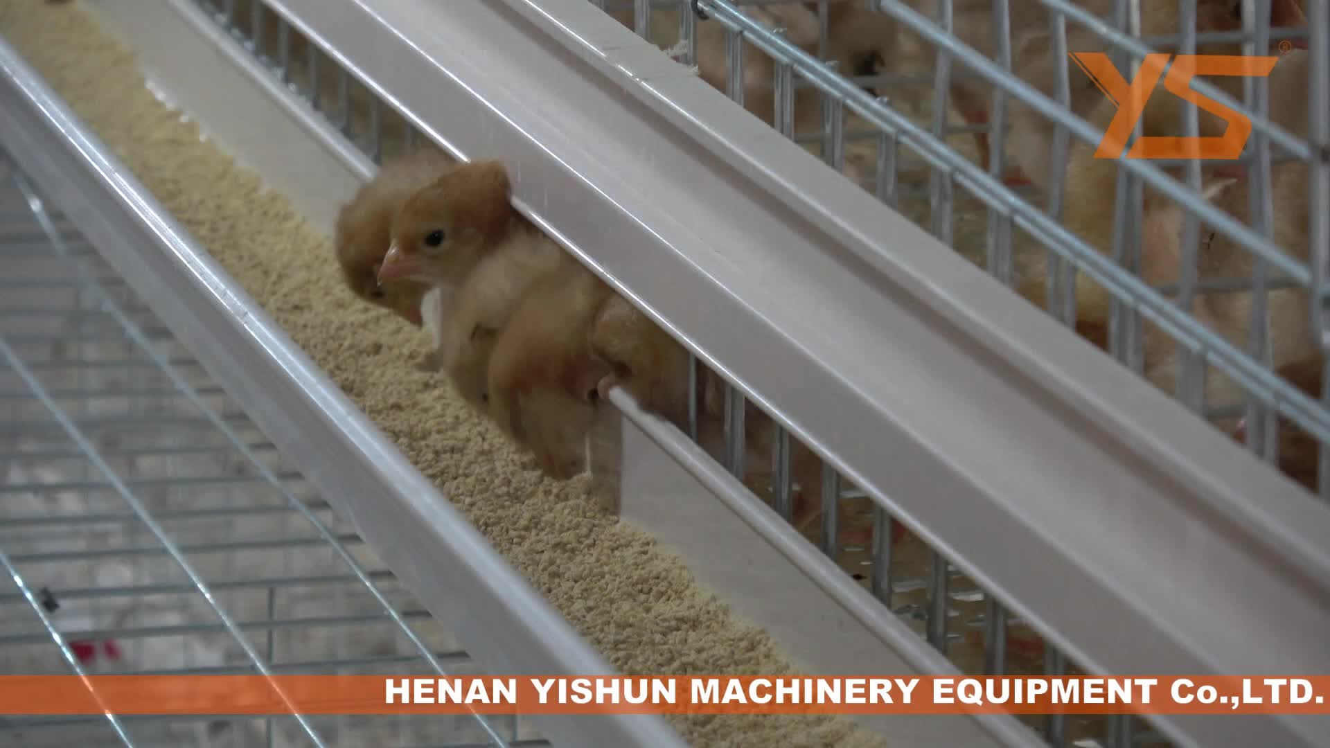 Low Price Poultry Farming Chicken Laying Cages