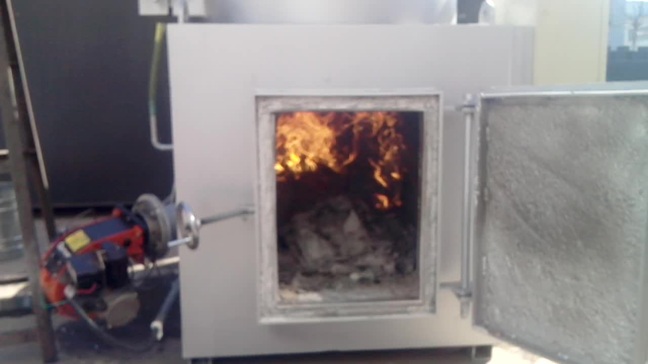 Wfs 50 Small Size Solid Waste Incinerator For Dead Animal