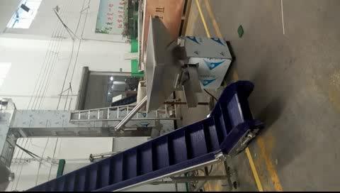 Phổ biến nghiêng điện vành đai băng tải thang máy feeder cho tự động đóng gói dòng