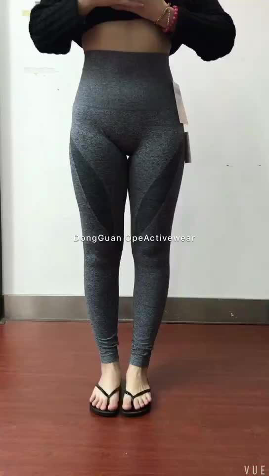 8073aa82768ae4 Womsn Seamless Gym Leggings Training Tights - Buy Womens Fitness ...