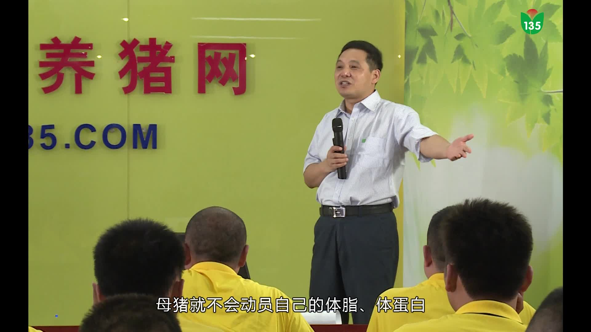 视频:135保健养猪技术专题讲座(文利新教授)