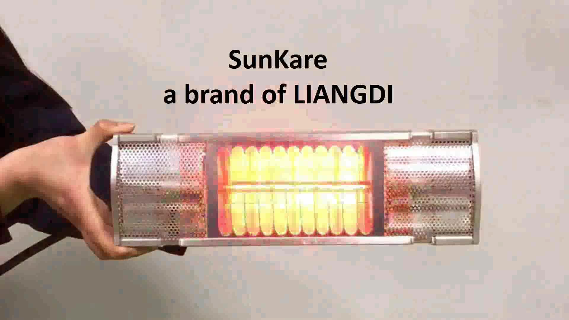 LiangDi Waterproof IP65 Infrared Indoor and Outdoor Heater with Bathroom