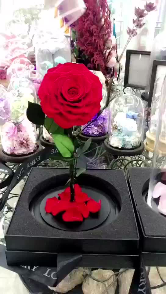 Wholesale 9-10cm preserved rose in glass dome for valentine's day