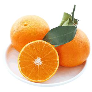 四川眉山爱媛38号柑橘5斤装果冻橙