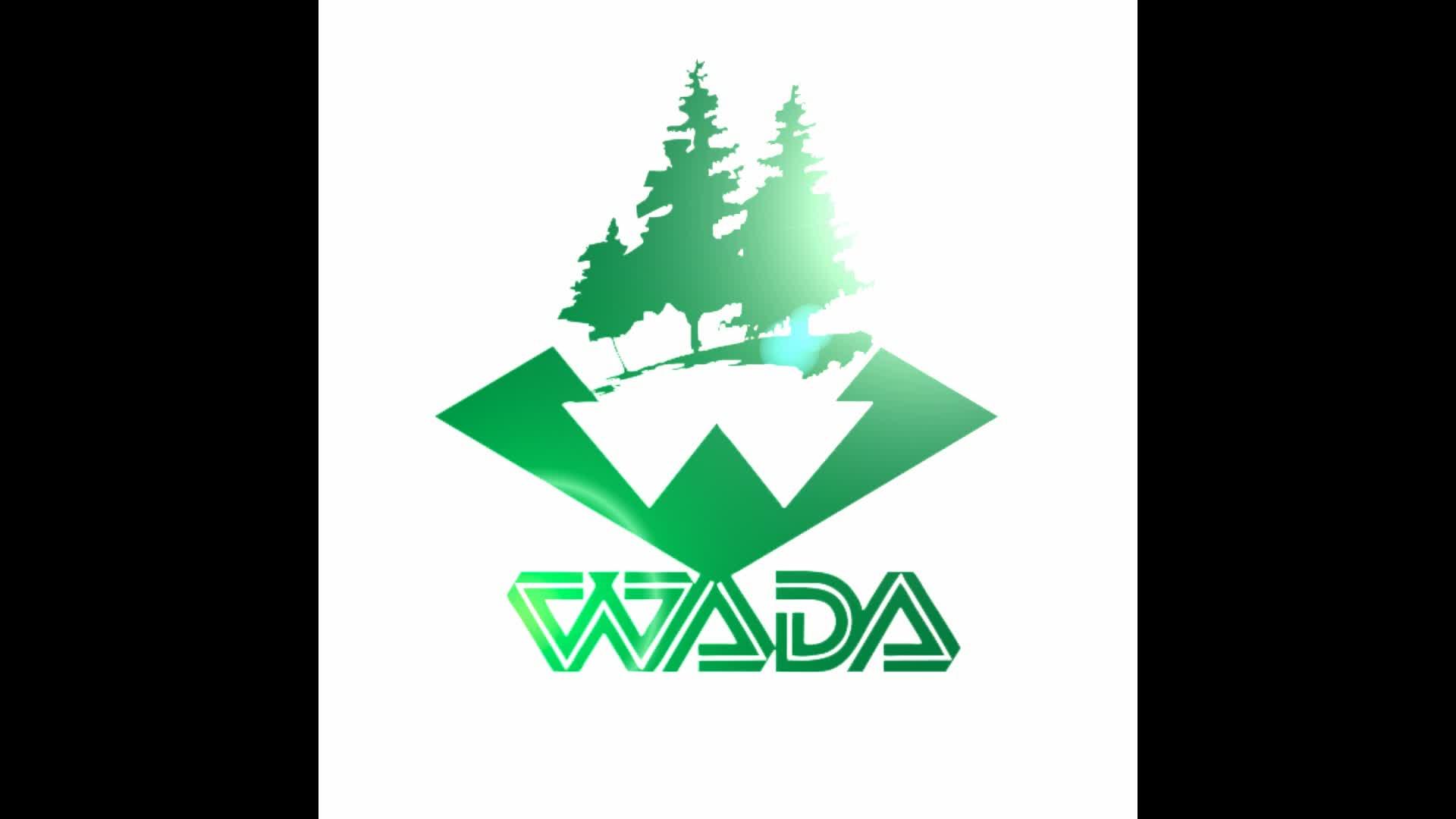 wada poplar overlap joint lvl plywood wood veneer bed slats