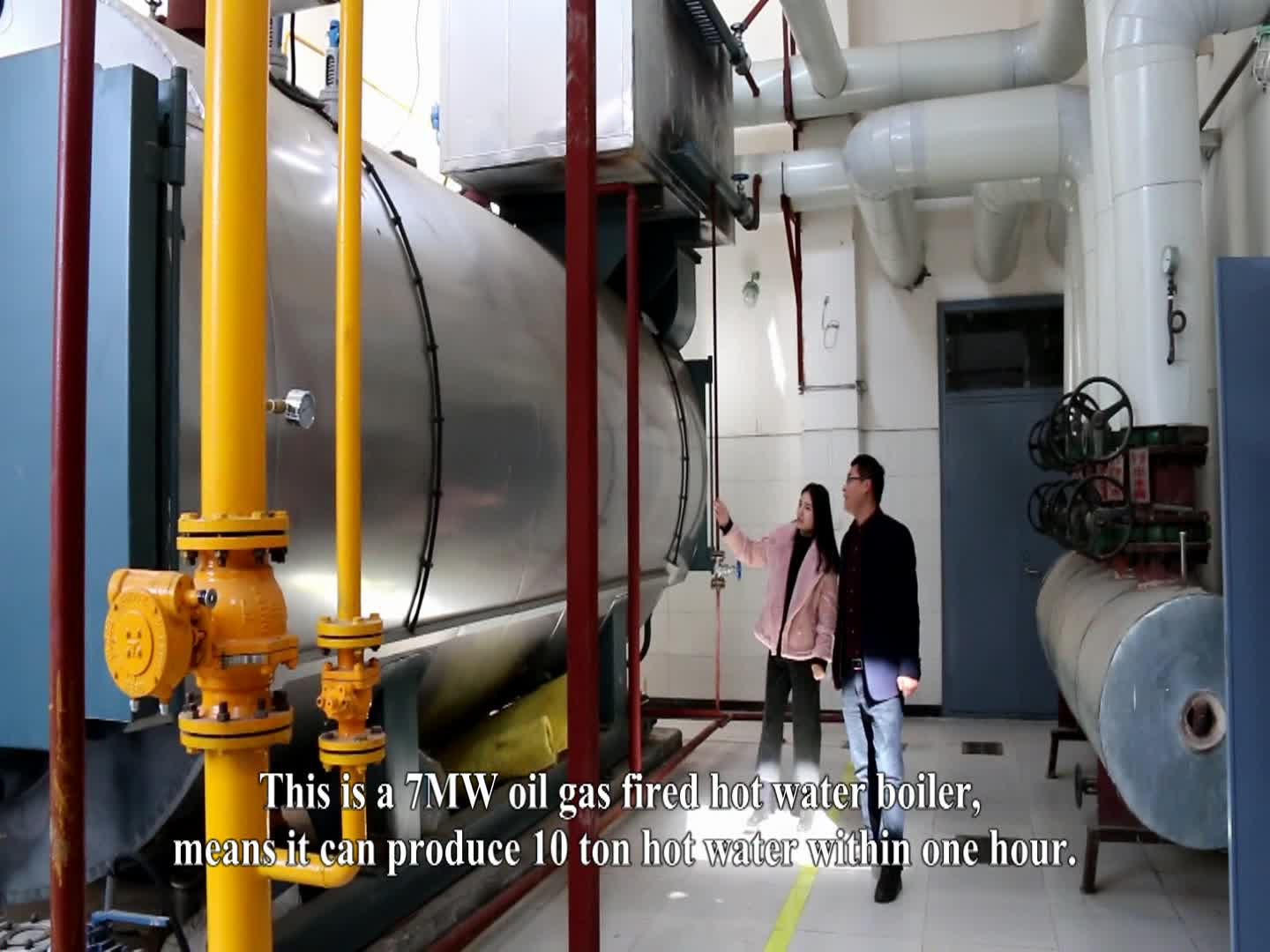 Competitive Price WNS Diesel Lpg Fired Hot Water Boiler for Hotel / Greenhouse / Swimming Pool