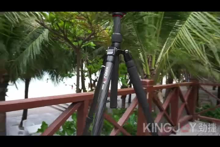 KINGJOY Foldable Heavy Duty Digital Camera Tripod K2208+QH20, Camera Photo Tripod