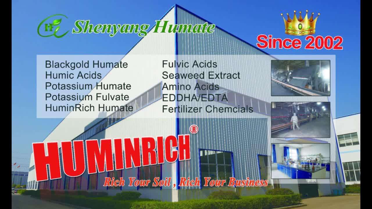 """HuminRich"" Ascophyllum Nodosum Humate Seaweed Extract Powder And Flake"