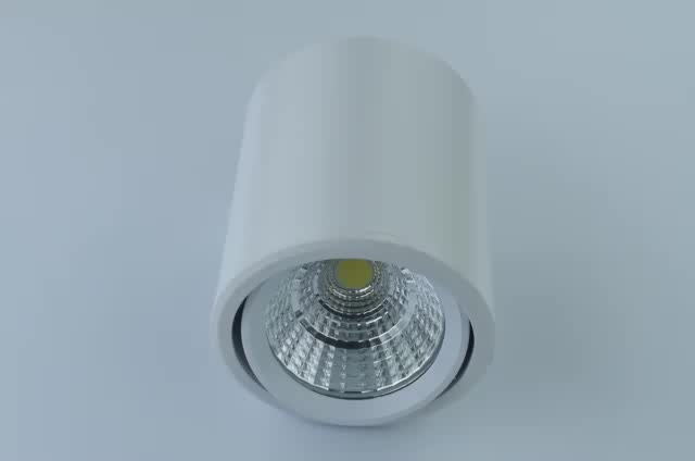 Dimmable color change CCT adjustable COB/SMD led downlight
