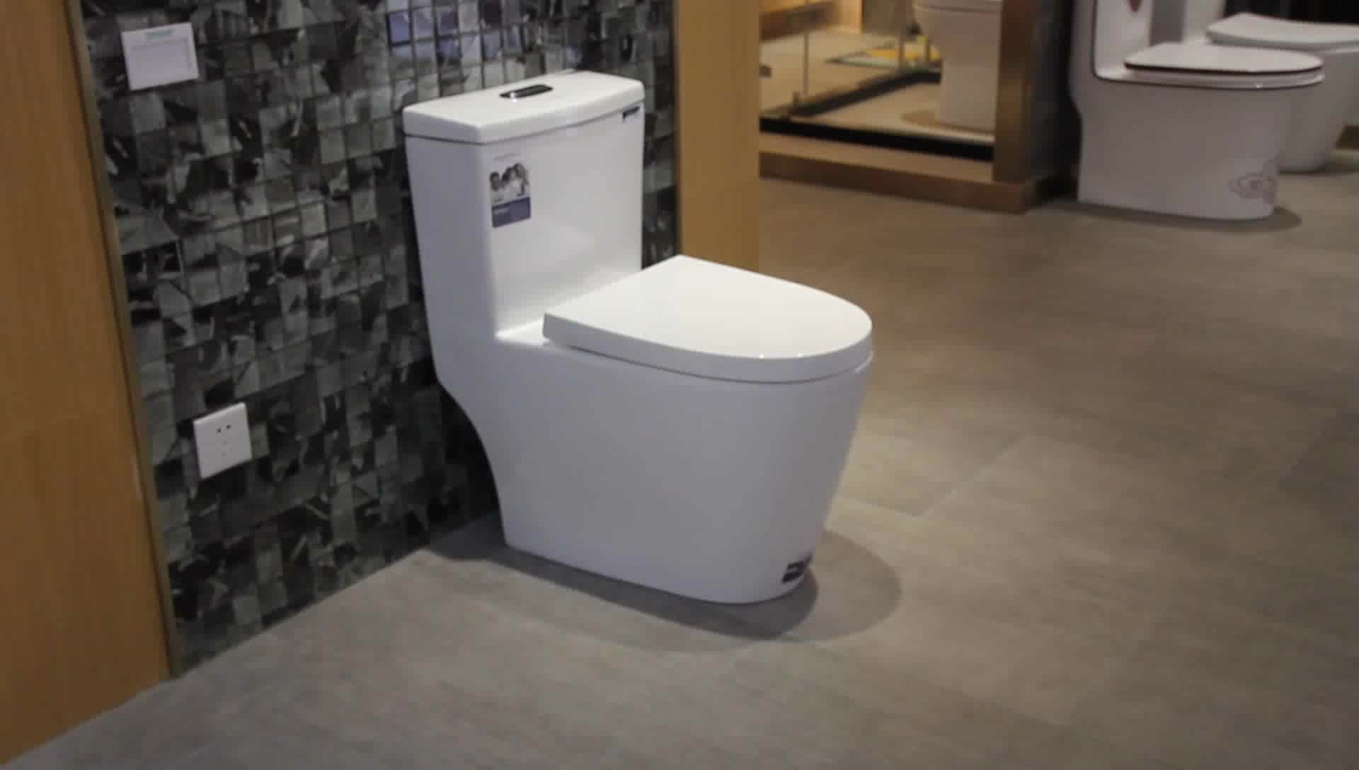 Public Western One Piece Washroom Peeping Dual Flush
