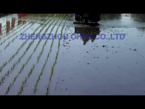 High quality mini rice planting machine/rice planter/rice planter machine