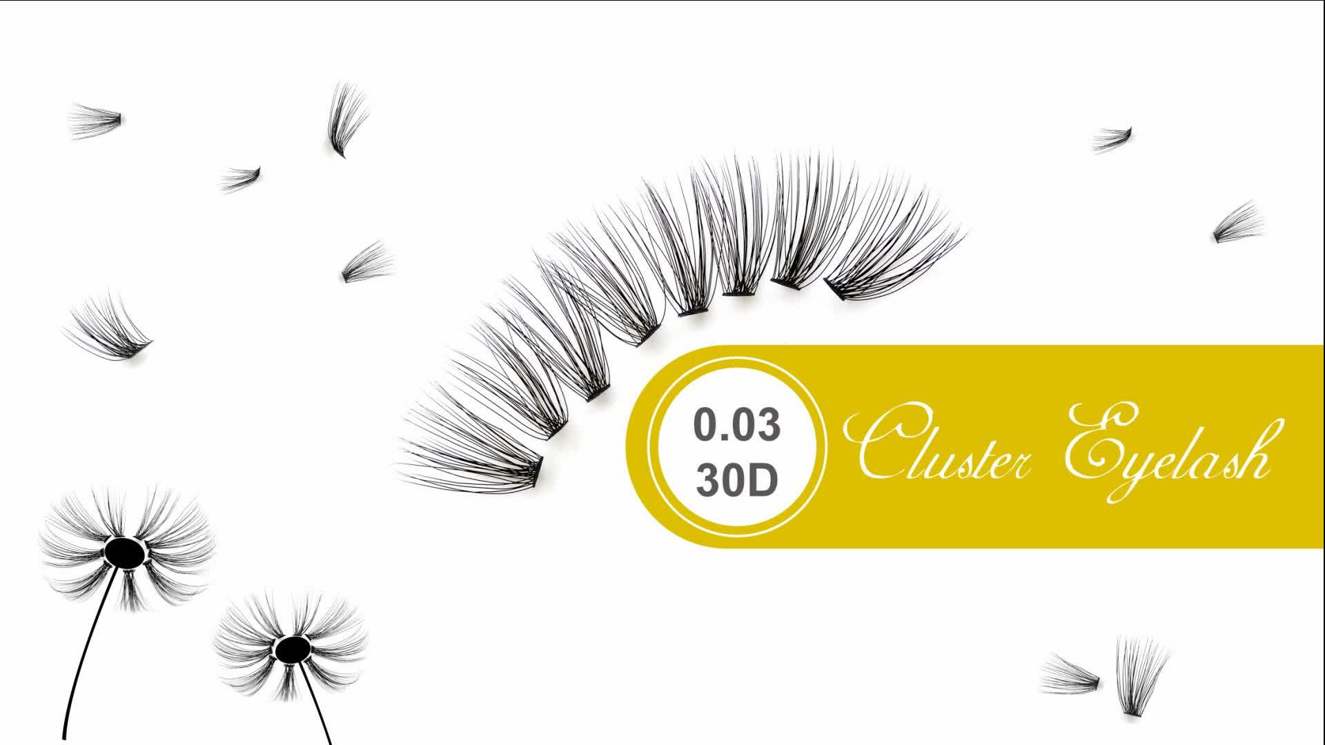 Hollyren Private Label Easy Fast Planting Russian Volume Pre-fanned Eyelash 2D/3D/4D/5D/6D/8D/10D