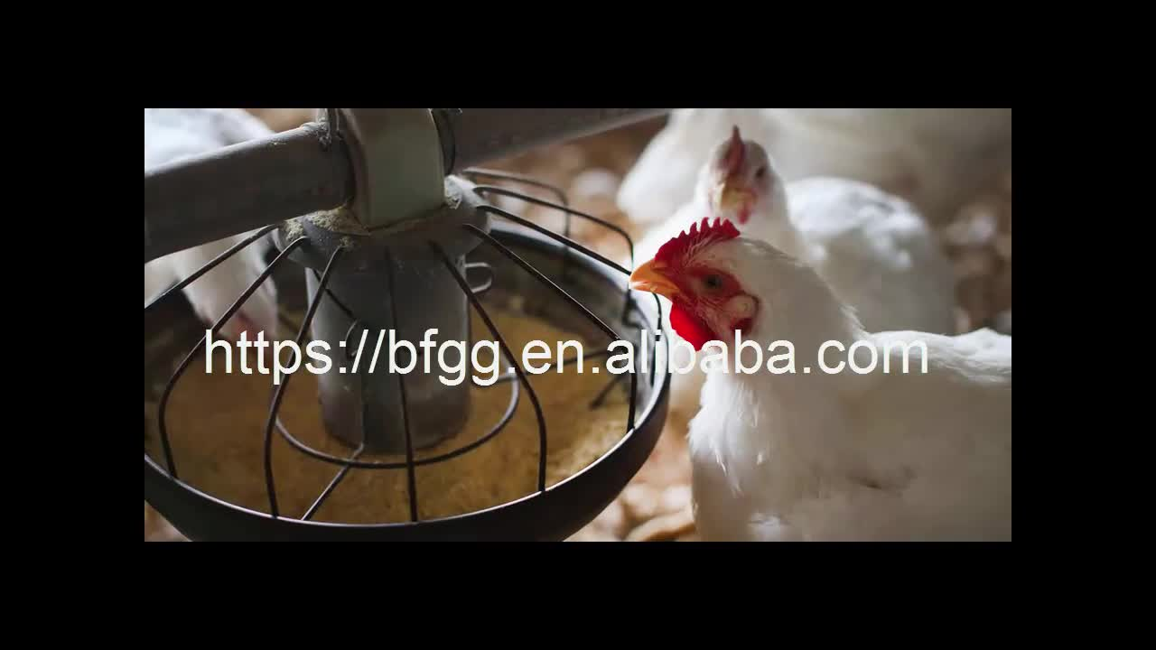 Inexpensive 2017 best sale automatic chicken house design for layers poultry farm construction